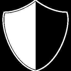 star citizen mercenary organization
